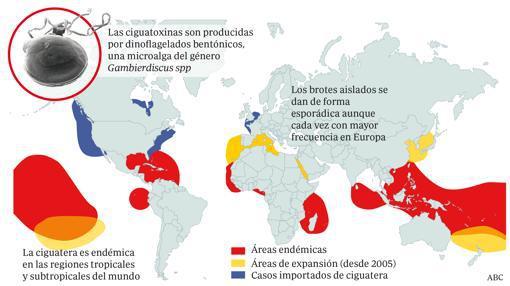 ÁREAS DE DISTRIBUCIÓN CIGUATERA.jpg