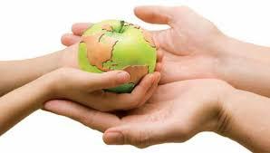 El mundo de la seguridad alimentaria.jpg