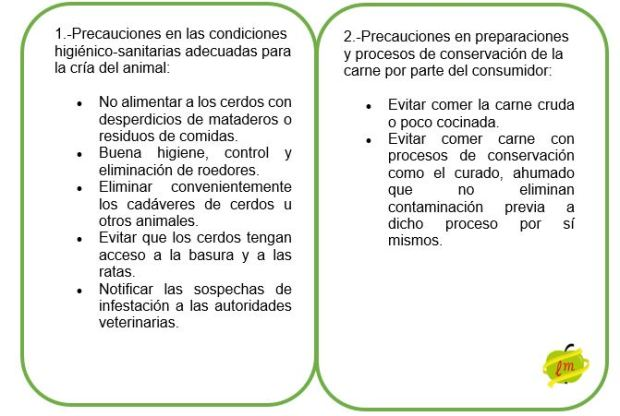 PRECAUCIONES HIGIENICO-SANITARIAS Y DE PREPARACION CARNE.JPG